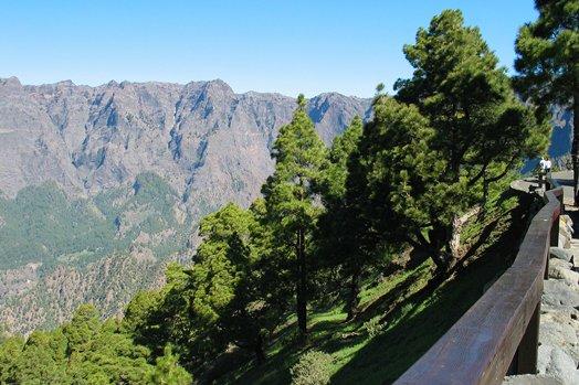 La Palma 2005 029