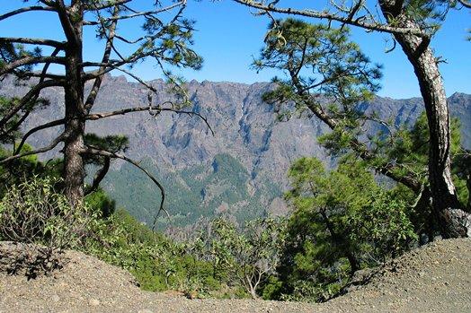 La Palma 2005 030