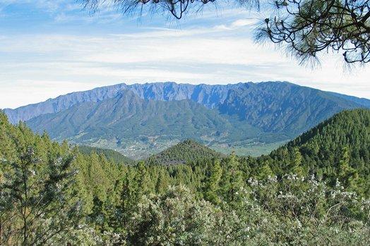 La Palma 2005 053