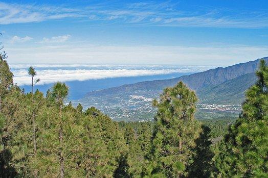 La Palma 2005 054