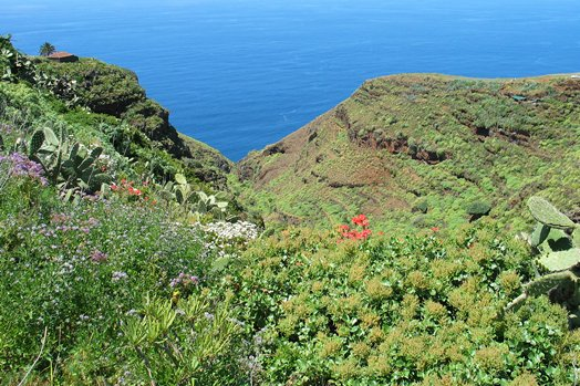 La Palma 2005 074