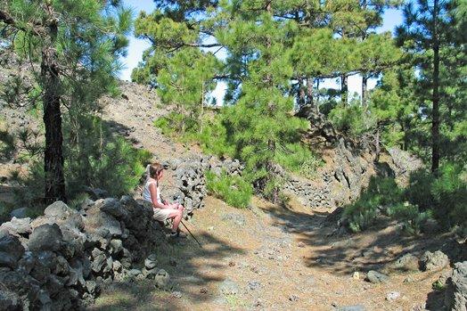 La Palma 2005 086