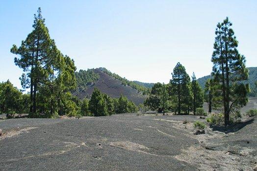 La Palma 2005 088