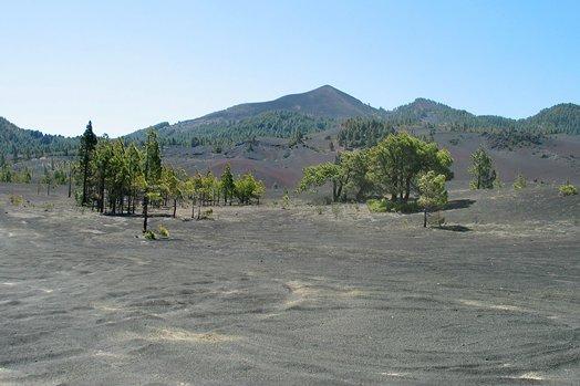 La Palma 2005 089
