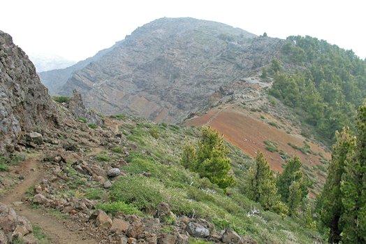La Palma 2005 100