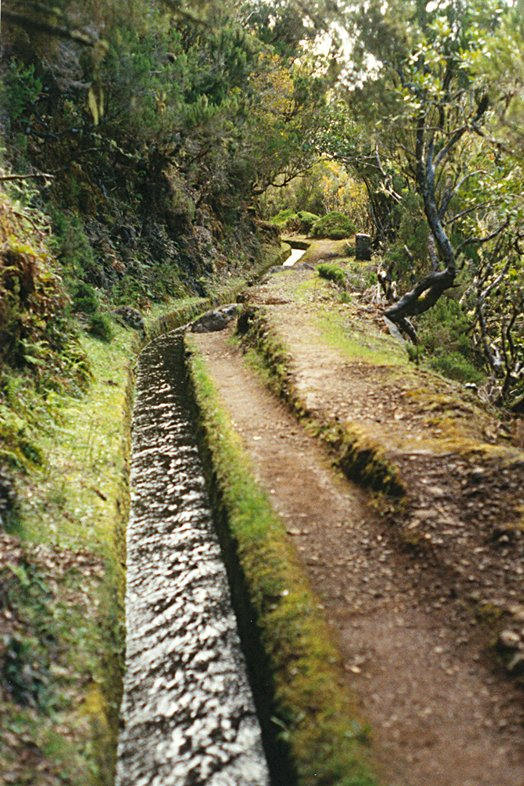 Madeira 2000 05