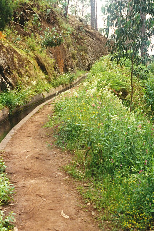 Madeira 2000 30