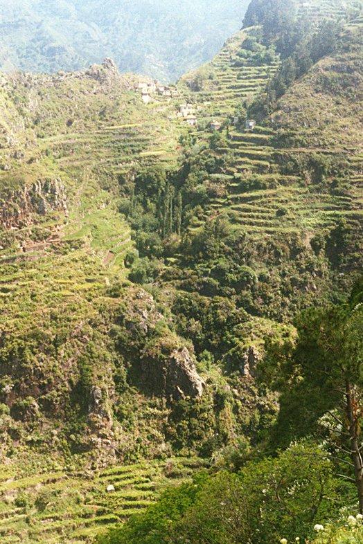 Madeira 2000 51