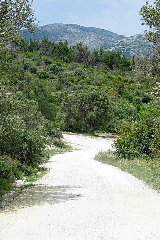Samos 2004 012