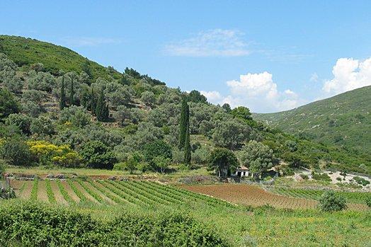 Samos 2004 037