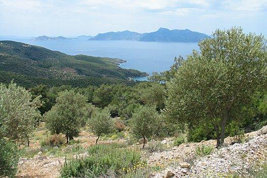 Samos 2004 042