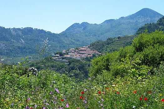 Samos 2004 065