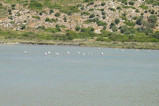 Samos 2004 073