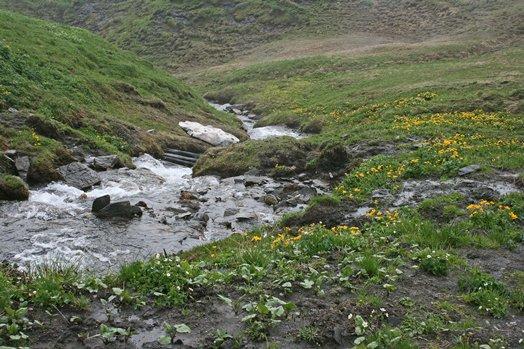 Zwitserland juni 2008 075