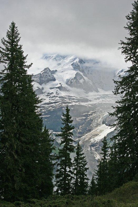 Zwitserland juni 2008 099